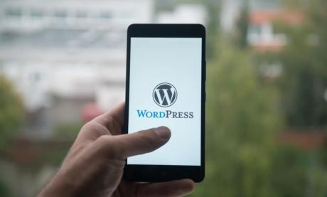 Melhor Hospedagem WordPress: Como Escolher e o Que Buscar