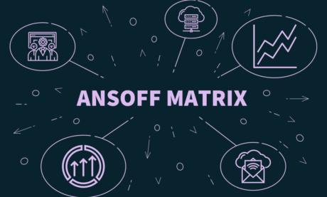 Matriz Ansoff: O Que É e Como Fazer Na Prática (+4 Exemplos)
